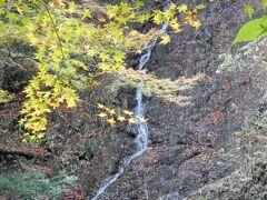 到着しました。 私も知らなかったのですが、天滝へは駐車場から1.2kmくらい歩かないといけないみたいです。 しかも結構登る! 運動に適した格好をおすすめします。 天滝に着くまでに7つの滝を通っていくのですが、 写真は途中にある糸滝です。