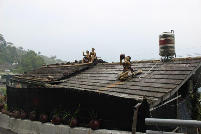 あれ?屋根になんかいるぞ