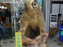 最初の観光場所は、昭和新山に有りますクマ牧場を訪れました