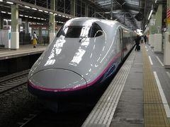 新潟に到着しました。上越新幹線なのでもちろんE2系の帯はピンク色ですが、0番台だったので車内の雰囲気は前日乗った北陸新幹線用のE2系に近かったです。