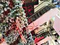 Central Chidlom(セントラル チットロム)  11月29日(木)  11:00  今日から1泊でお楽しみの Shangri-La Hotel Krungthep wing  チェックアウト後スーツケースを預けて BTSのChidlom(チットロム)駅(Exit5)直結の https://btsapp1.bts.co.th/WebApplication//WareHouse/AreaMap/290761115025E1_AUG18.png  Central Chidlom(セントラル チットロム)へ