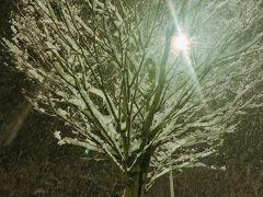 全国的な寒波で広島市も雪模様