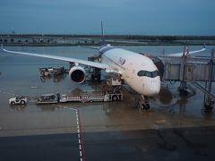 ●TG622便@関西国際空港  定刻通り関空に到着しました。 雨の関空です。 旅も終わりです。  想像以上に良かったカンボジア。 何より、食べ物が合いました! また機会があれば、カンボジアのリゾート、シアヌークビルなんていいかも。
