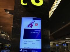 トルコのアタチュルク国際空港へのトランスファーゲート。空港内乗継待機中には、ドバイ空港のようにコーランの始まりの呼びかけ『アザーン』放送はなくて、いたって静かでした。