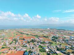 島全体が見渡せて、車が小さくどこを走っているかも見える。 きれいに整備された田んぼが美しい。  360度島と海が見渡せるこんな景色、見たことのない爽快感。 海の青もきれい。