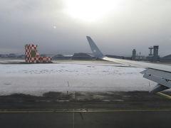 三沢空港は近いですね。あっという間に着陸。三沢は太平洋側だからか、思ったより雪が積もっていません。