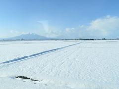 しばらく走っていると、風景が開けてきて、シンボリックな山が見えてきました。 「岩木山だ!」 津軽富士とも呼ばれていて、山容が大変美しいです。