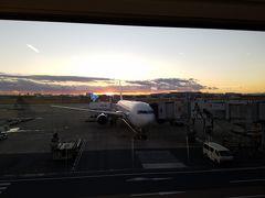 こちらの767に乗っていざ出雲へ!夕焼けが素敵でした。出雲行きに767は珍しい一方で、やはり国際線で787とA350とかに乗り慣れてしまうと、767は耳が痛かったり乾燥を感じたりします。