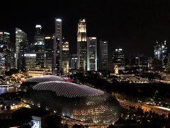 マリーナ・マンダリンからの夜景も今夜が最後。 明日は、いよいよ帰国です。  今回はシンガポール・エアなので、朝ご飯を食べる余裕があります。 「トースト・ボックス」に行ってみる?