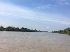 メコン川。 茶色いけど、土の色だそうで、きれいなんだそう。  これから川に浮かぶいろいろな観光用の島を巡る。 それぞれにその島の売りがあるっぽい。  大きめの船で最初の島へ向かう。