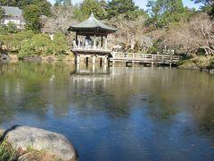 浮御堂、年末寒波で池が凍ってます(@_@)