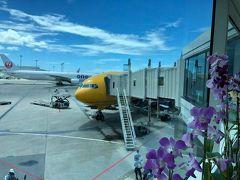 那覇空港到着!お花とスターウォーズ号で気分あがります~