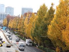JR信濃町駅を降りて、明治神宮に向かう外苑東通り。 歩道橋からのイチョウ並木。
