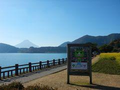 ついでに池田湖も。  イッシー像の写真撮ったハズなのに無い…ショック(T_T)  菜の花が満開でした。  奥にはまたまた開聞岳。