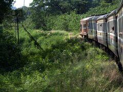 草がおい茂り鬱蒼とした中を行く泰緬鉄道。