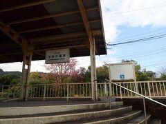 子供の国駅 ホーム1本、改札なし ICカードも使用できずの日南線