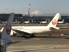 11:30発のJL513便で新千歳空港へ。 富士山が綺麗に見えました。
