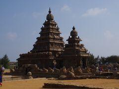 海岸寺院を見て行きます。 8世紀初頭に建てられた小さな寺院です。 名前通り昔は波打ち際に建てられていましたが、今は現状保存のため防風林に守られています。 大小2つの寺院があって奥の大きい寺院はシヴァ神を。手前の小さな寺院はヴィシュヌ神を祀っています。
