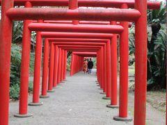 五所稲荷神社 宮崎神宮へ行こうとしたら前撮り中のカップルがいたから五所稲荷神社の方へずれたら今度はこちらに移動してきてかさなっちゃった。 お幸せに。