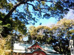 平安初期の征夷大将軍坂上田村麻呂公は戦の勝利を神前で祈願し、各地に御分霊を祀ったとも伝えられ、現在では全国四十四社のキノミヤジンジャの総社として、信仰を集めております。  だそう。