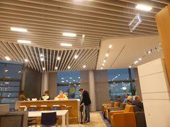 フランクフルト国際空港 (FRA)