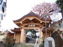熱海 温泉寺の山門と熱海桜  来宮神社から宮坂を下り、温泉寺から糸川遊歩道へ向かいます。