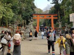 三輪駅から、奈良駅まで戻ってきて そこから歩いて春日大社まで。 鳥居をくぐって、本殿への道を見失う。 なんだか、ものすごい遠回りした気がするんだけど気のせいだろうか。  三輪山と違って、春日大社はすごい人だった。