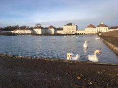 白い鳥がたくさん。下の段の池とか、凍ってた。