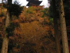 大滝山福生寺の3重の塔は丘の上にある。