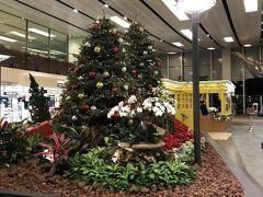 チェックインの10分前位になったので、トランジットホテルに移動します。 空港内はクリスマス飾りがまだありました。 どうやら、まだクリスマスセール期間中のようです。  日本と違って、クリスマスが終わったら、すぐに正月飾りというわけではないようです。