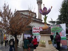 ドルムシュは、チャルシュ・メイダーヌ(チャルシュ広場)前で降ろしてもらえます。広場周辺には、観光案内所、タクシー乗り場、ハマム(公衆浴場)やモスクがあります。  そして、「サフランの花」の像。 サフランボルは、その昔、サフランの花が群生していたことから、そのように名付けられたそうです。