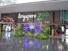 動物園に到着。  入場チケットはナイトサファリの入り口ではなく、こちらのシンガポール動物園のチケットカウンターで購入します。  現地到着は19時だったので一番早い入場回の19:15は既に売り切れでしたが、事前に公式ホームページからチケットを購入済みでしたので、問題なく一番早い回に入場することが出来ました。  Voyaginというサイトでもチケット購入は可能ですが、時間指定が出来ないので、予約するなら公式サイトをオススメしておきます。