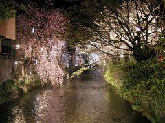 【祇園白川】(京都市東山区) 白川南通沿い (2002年3月30日撮影)