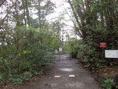 ここから原生林へ(^_^) 時に…この時点で午前中降っていた雨は止み、まだまだどんよりとした空ながら、一応「曇」の状態に(*^。^*)