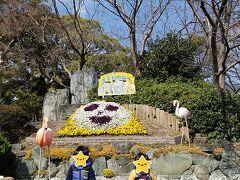 神戸市立王子動物園  土日に車で行く場合 お昼前には満車になってしまうとの情報を得て 9時の開園時間に合わせて到着!! まだ数台だけで余裕で駐車できましたが 帰りの11時半にはほぼ満車状態となっていました