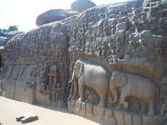 幅29m、高さ13mの巨大岩にびっしりと彫られた彫刻があり、インドの叙事詩の中の「アルジュナの苦行」の場面と言われているそうです。