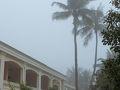 4日目の朝。目が覚め、ブラインドからの光がこれまでと違うので様子を見に外へ出ると霧でした。  今朝も川辺へ。