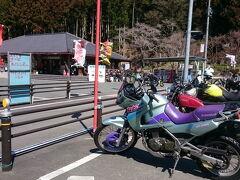 さっきのお蕎麦屋でトイレに行かなかったので、道の駅 鳳来三河三石で小休止。  きれいな花畑がありますよ! 菜の花3分咲き と看板があったけど...