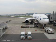 今回搭乗予定の機材です。SAMURAI JAPAN特別塗装機です。