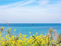 曇る前に着きたいので、海沿いに角島へ向かいます。 そして見えてきたこの海・・・! 沖縄みたい!