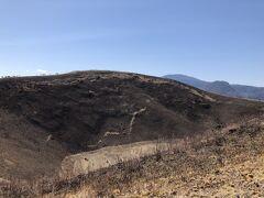 山全体が黒茶色っぽいのは早春に行われる山焼きのせいです。 早春に行われる山焼きは大室山の風物詩です♪