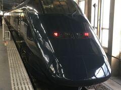 新潟駅に到着。 降りたホームに「現美新幹線」が止まっていました。