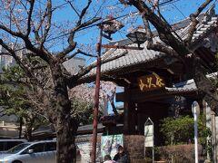 御殿坂 日暮里駅から谷中方面へと伸びる御殿坂はソメイヨシノの並木になっています。 前の日は急に冬のように冷えましたが、この日は快晴!! ソメイヨシノがチラホラと咲き出していました。