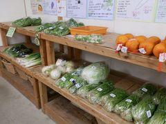 地元の農家が生産した野菜も販売していました。