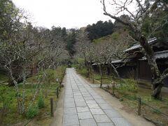 松岡山、東慶寺  臨済宗円覚寺派 1285年開創 かつては女人救済の縁切寺とよばれていました。  花のお寺として有名らしいですが、 梅の季節が終わり寂しい感じでした。  拝観料大人300円 受付の隣が朱印所