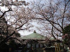 石井山、長勝寺  材木座にある日蓮宗のお寺  桜の名所