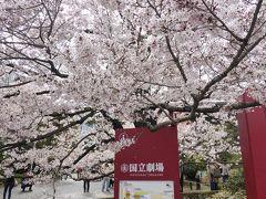 国立劇場でたくさんの桜を楽しんだので、そろそろ次へ散策です