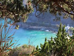 1時間ほど松崎町の蔵歩きをしたあとは、再び車でドライブ。  西伊豆の岩海岸の絶景を眺めながら車を走らせる。