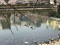 大川で佇むのんびりした風景
