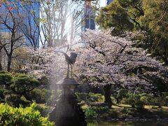 霞ヶ関駅から日比谷公園へ。 雲形池の鶴の噴水と満開の桜
